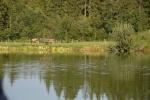 Paarfischen und Fischerfest (73).JPG